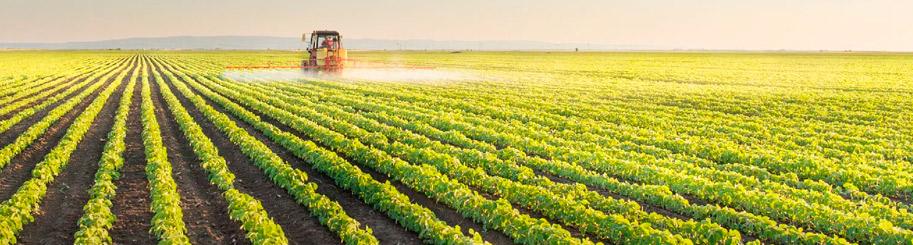 area-pirassununga-crea-sp-palestra-agronomia-no-campo-banner