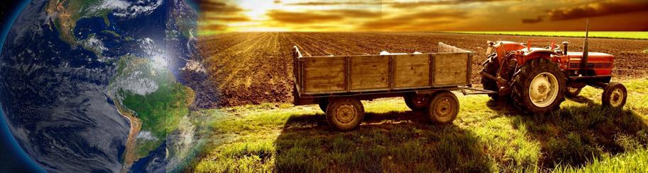 area-pirassununga-importancia-agricultura-brasil-mundo
